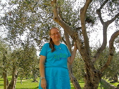 My First Meeting with an Olive Tree.JPG