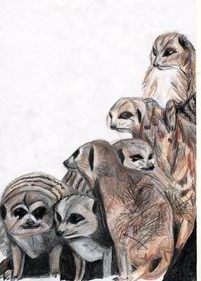 Meercats by Genevieve