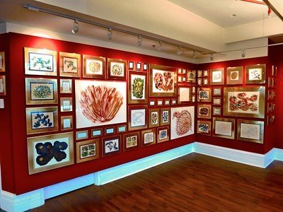 Jharna Kala Exhibition in Ottawa 2014