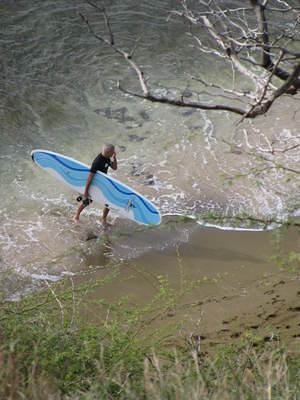 """Board"" of Surfing"