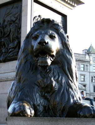 Trafalgar Square: the lion is watching you!