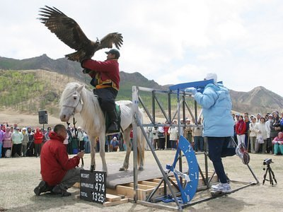 Sri Chinmoy lifts horse, man and eagle