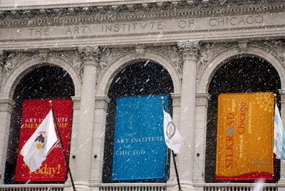 Snowy Chicago - The Art Institute