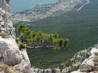 Crimea: the Aipetri mount